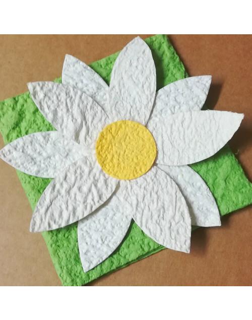 Pacchetto confetti margherita SACHMARG001